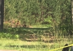 WPDE _ Body Found near Aynor _ 4_ 5.10.17.jpg