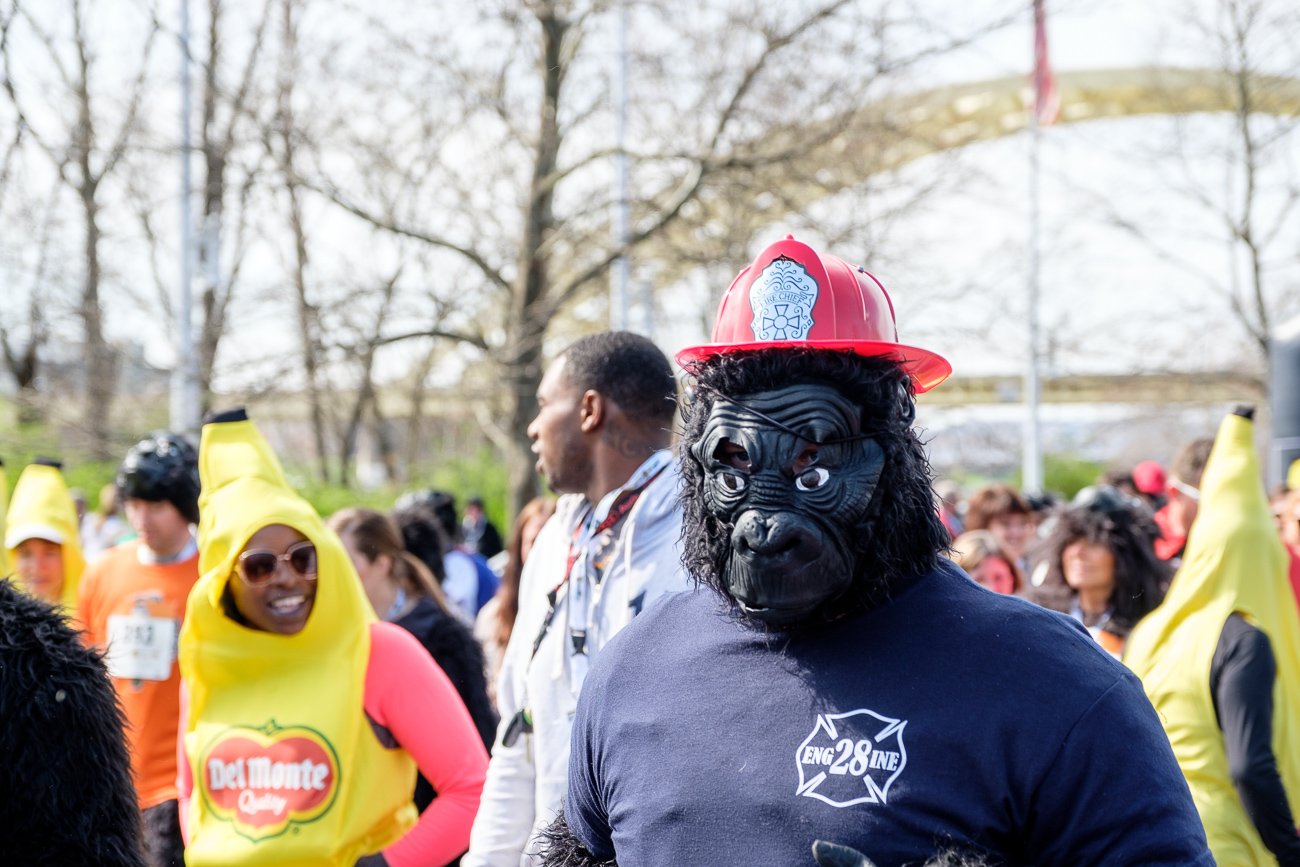 The 2017 Gorilla Run 5k took place on Sunday, April 2 with a start and finish at the Montgomery Inn Boathouse. Event proceeds go on to benefit mountain gorillas. / Image: Daniel Smyth