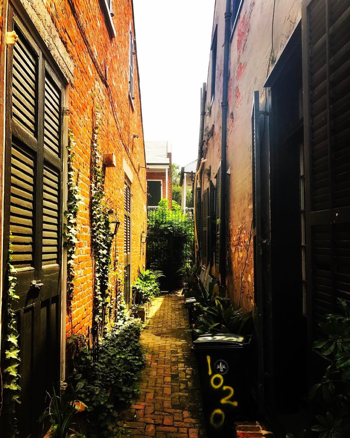 PLACE: French Quarter, New Orleans / MILES FROM CINCY: 815 / ABOUT: New Orleans' French Quarter is well known for its shenanigans, but come off-season or peer into a side alley and you'll realize this is far more than a large, glitzy outdoor cantina. / Image courtesy of Instagram user @katie_scarletttt // Published: 5.14.17