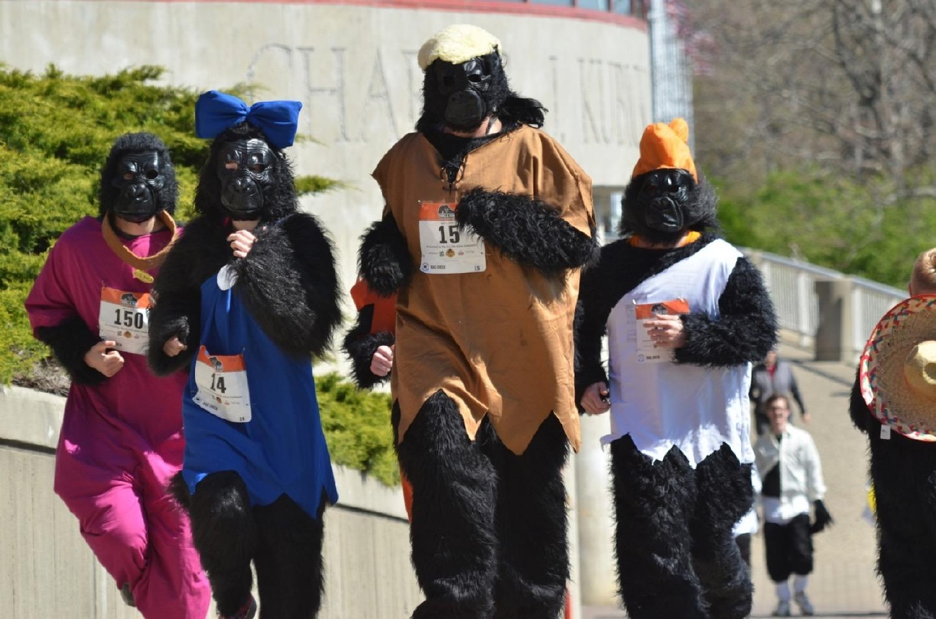 The 2017 Cincinnati Gorilla Run will take place on Sunday, April 2. The 5k race begins and ends at the Montgomery Inn Boathouse and is a fundraiser for the Mountain Gorilla Conservation Fund, which is an international charity striving to protect the world's last remaining Mountain Gorillas. / Image courtesy of the Cincinnati Gorilla Run // Published: 3.23.17
