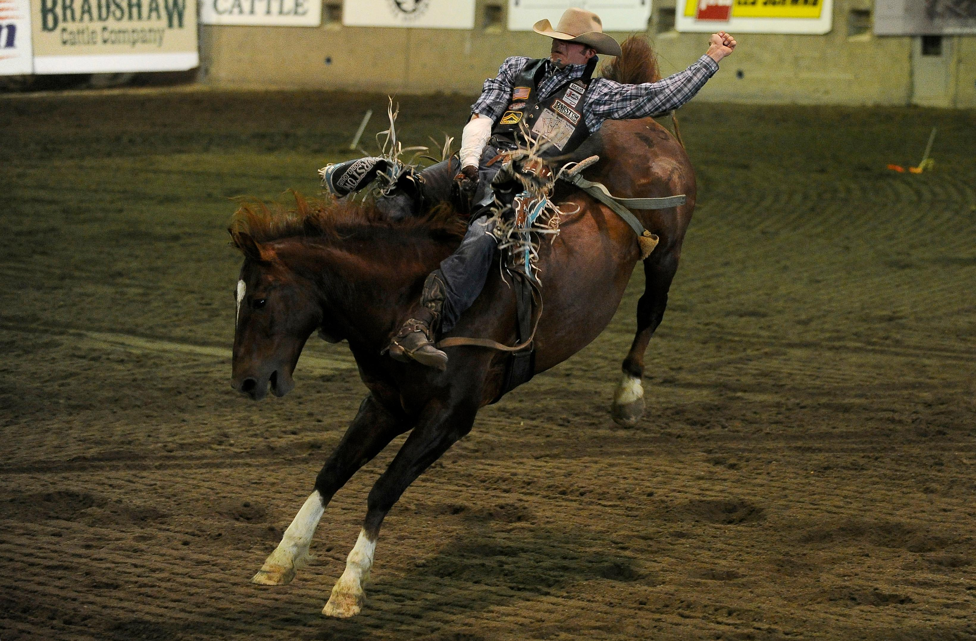 Andy Atkinson / Mail TribuneAustin Foss from Terrebonne takes his turn competing in bareback riding at the Jackson County Expo Thursday evening during the Wild Pro Rodeo.