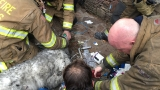 VIDEO: Firefighters rescue, resuscitate dog following large house fire