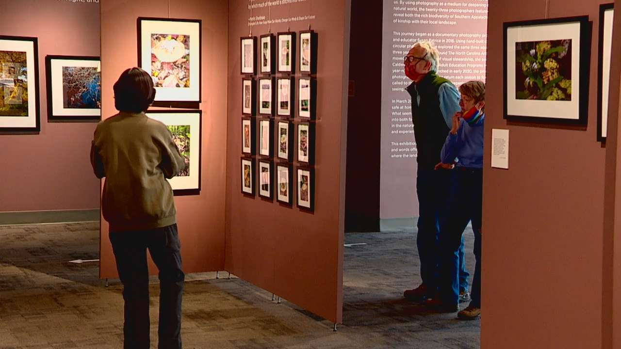 "The N.C. Arboretum's newest exhibit is called ""The Enveloping Landscape: A Contemplative Photographic Journey,"" and features both novice and experienced photographers showcasing shots of southern Appalachian landscapes. (Photo credit: WLOS Staff)"