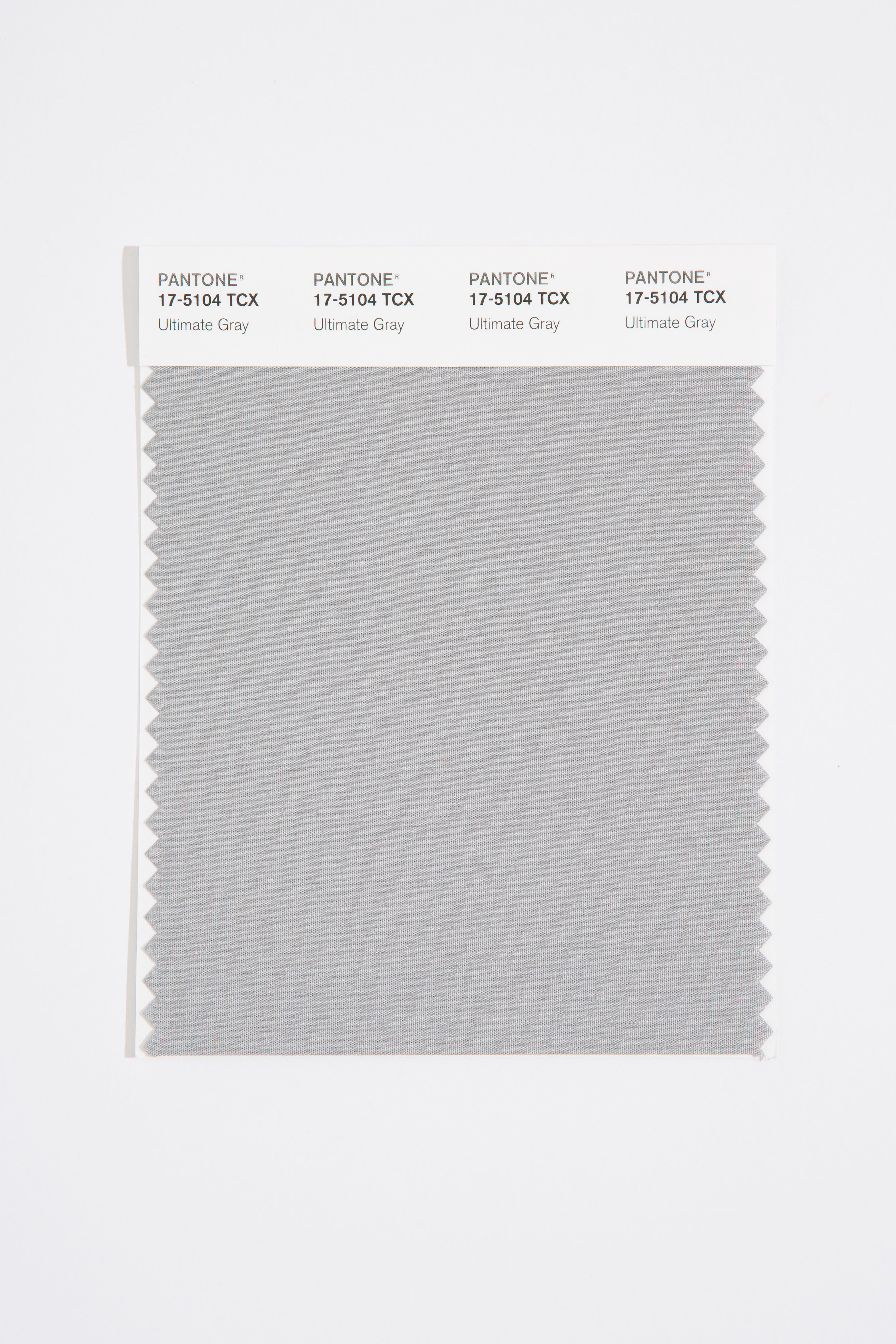 "According to Eismean, Ultimate Gray is ""solid resilient color that is something you can depend on."" (Image: Pantone)"