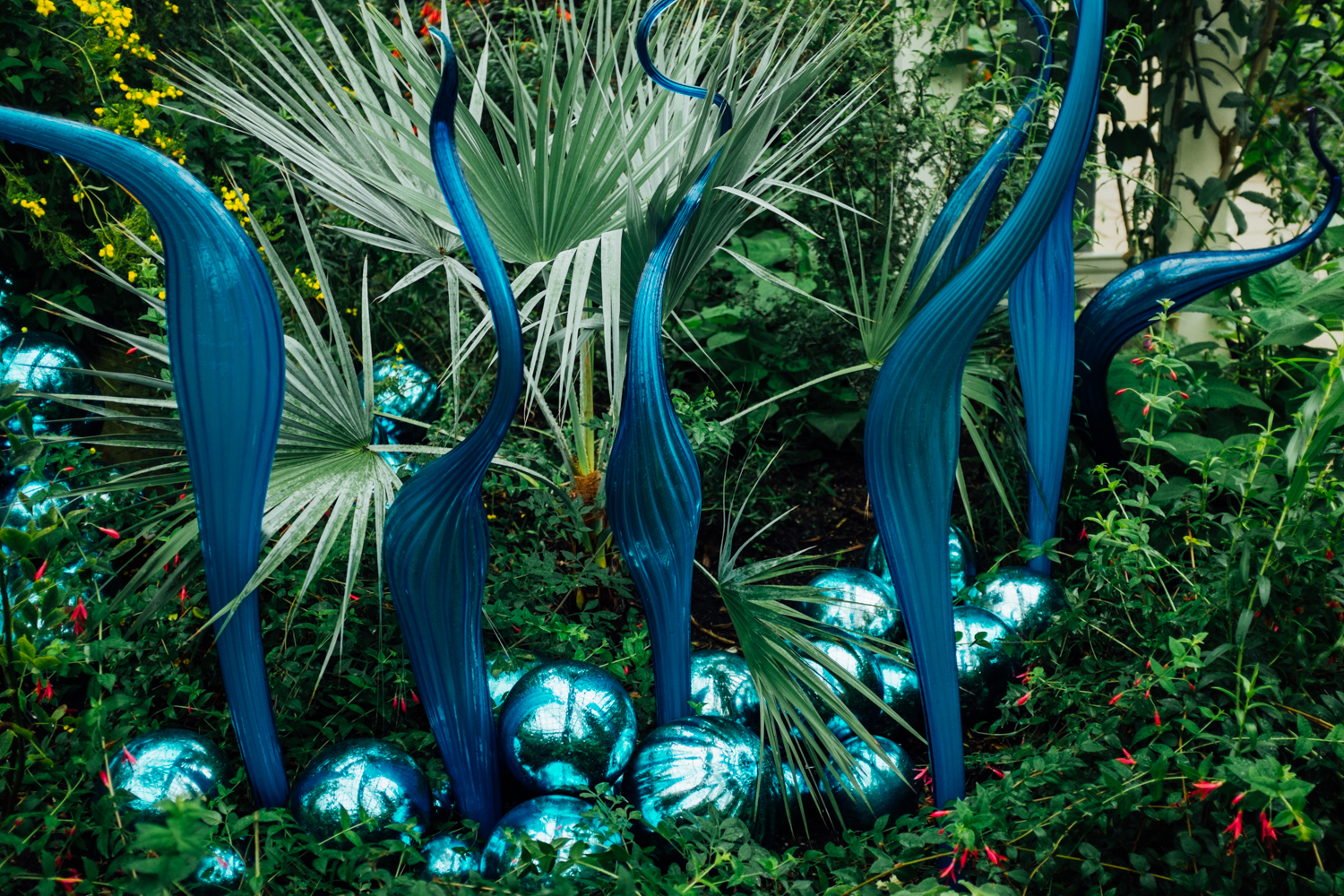 """Chihuly: Reflections on Nature"" is being shown at The Royal Botanic Gardens, Kew in London through October 27, 2019. Kew is 300 acres, and is the most diverse collection of living plants in the world. The Chihuly collection on display shows works of the Seattle artist from the past 50 years. Many pieces are being shown in the UK for the first time. (Image: Elizabeth Crook / Seattle Refined){ }"