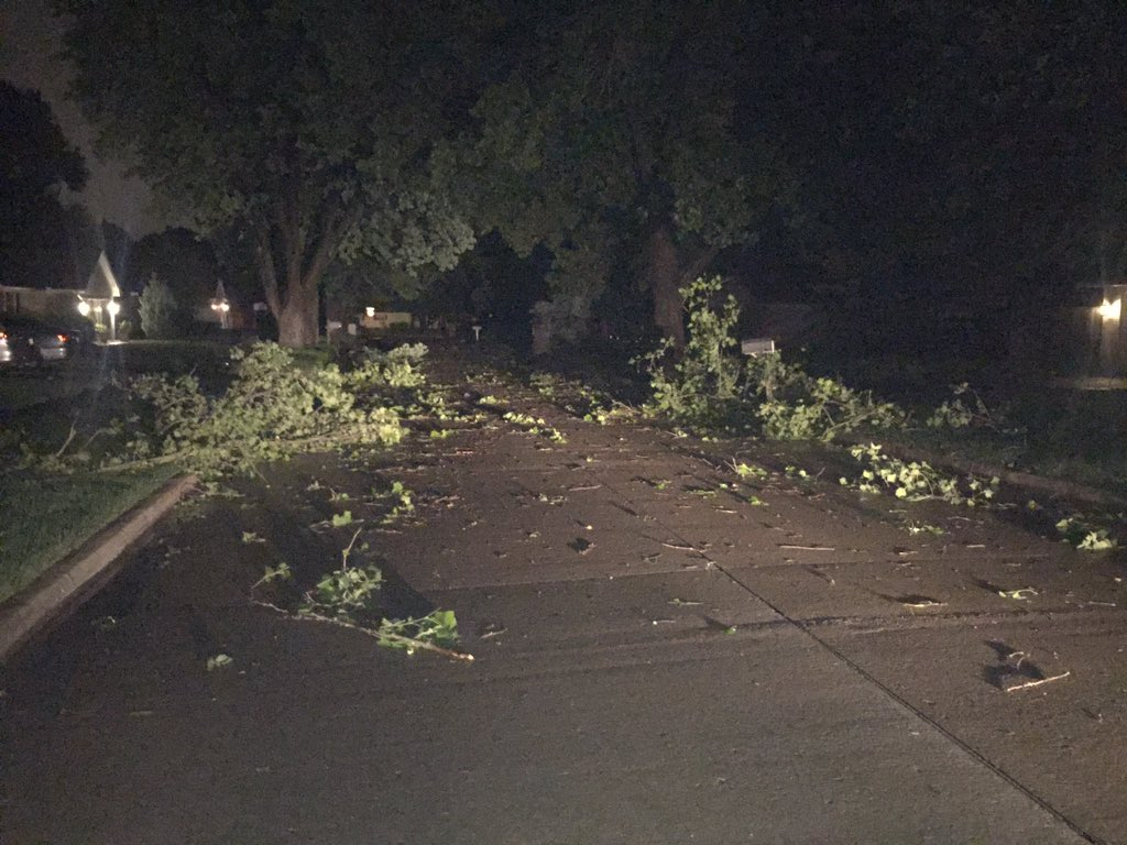 Lots of downed trees and large limbs in neighborhood just west of Berry road in Norman.(Kyle Hoelting  / KOKH)