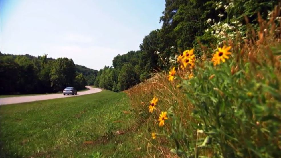 Natchez Trace Parkway ranked as one of 'best road trips and scenic drives'