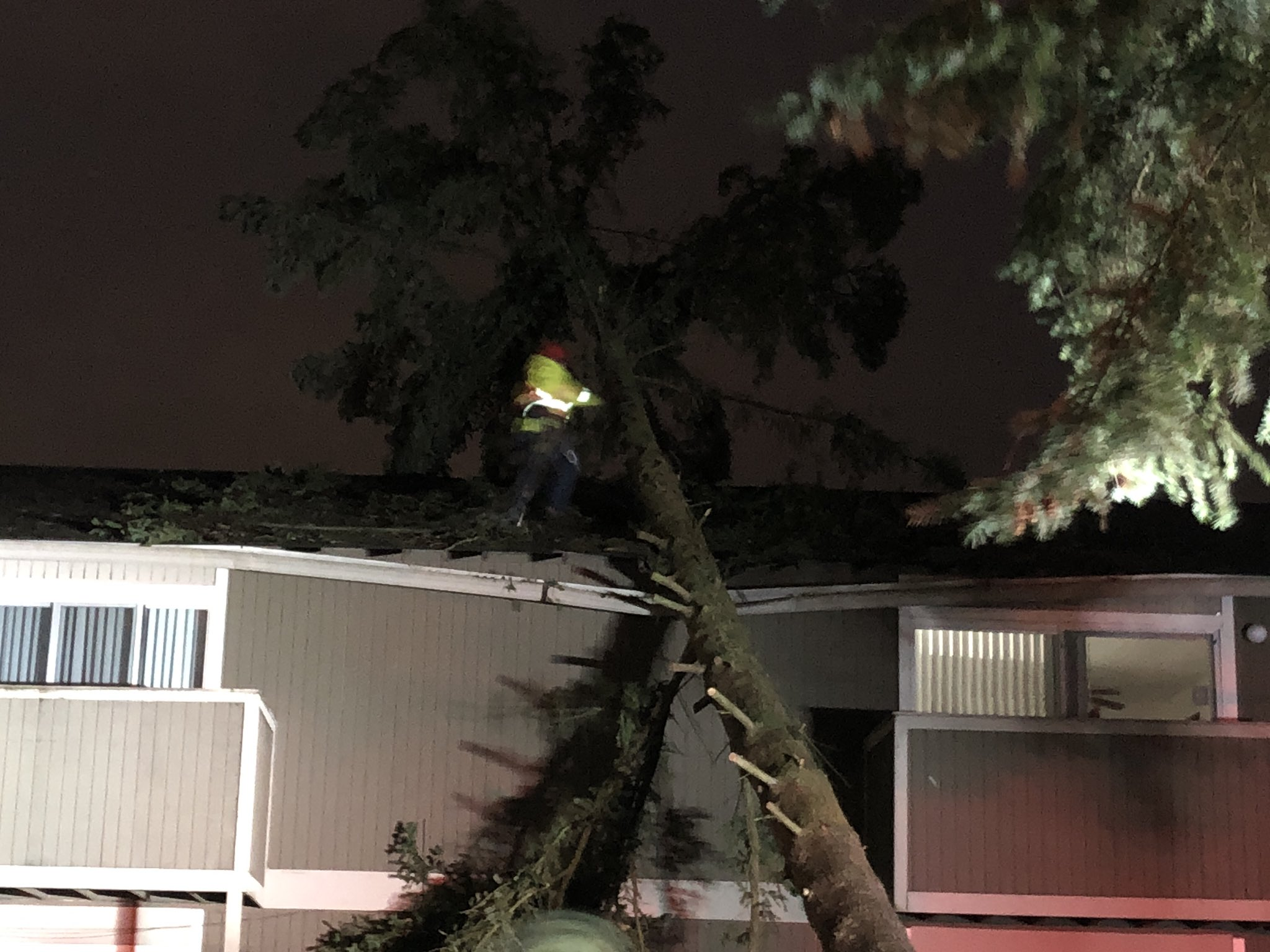 Crews work to clear a 40-foot-tall tree that fell onto an apartment complex in Kent Thursday night, March 8, 2018. (Photo: KOMO News){ }
