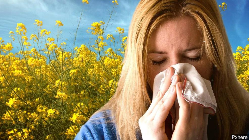 Surviving allergy season: Ease your misery by keeping allergens out of your home