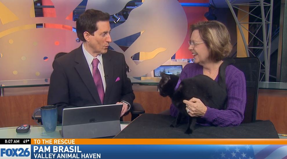 Pam Brasil visited from Valley Animal Haven with a cat looking for a good home