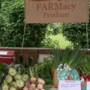 FARMacy program encourages people to use food as medicine