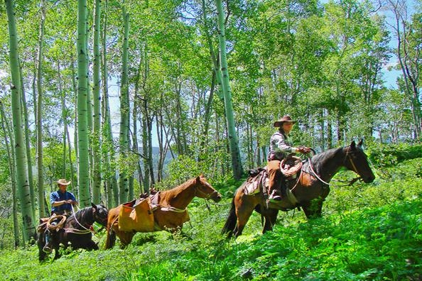 Gorgeous mountains, horseback riding, all-inclusive dude ranches, and breathtaking landscapes. What are you waiting for? Plan your trip at http://www.dude-ranch.com/
