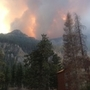 FIVE YEARS LATER: a look back at the Carpenter 1 fire that left Mt. Charleston scarred