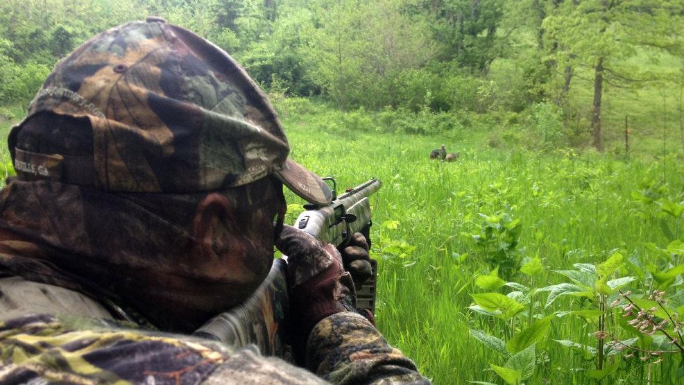 Twra releases spring turkey quota hunt applications wtvc for Tennessee fishing license prices