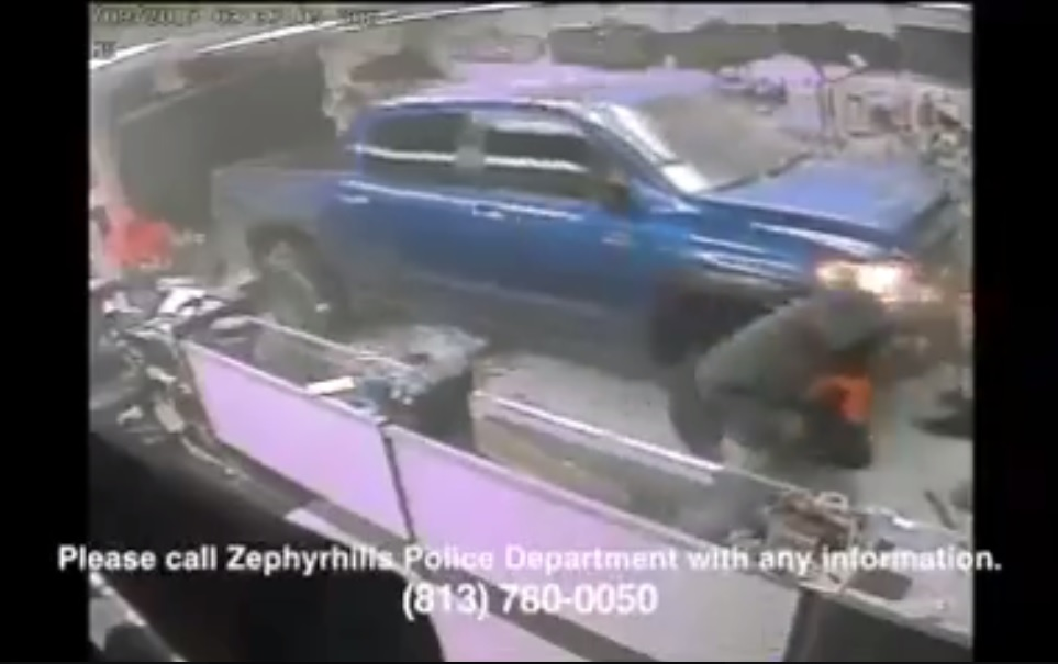 Zephyrhills Police are asking for help identifying the remaining suspects who used a truck to crash into a gun store Sunday. (Zephyrhills Police Department)