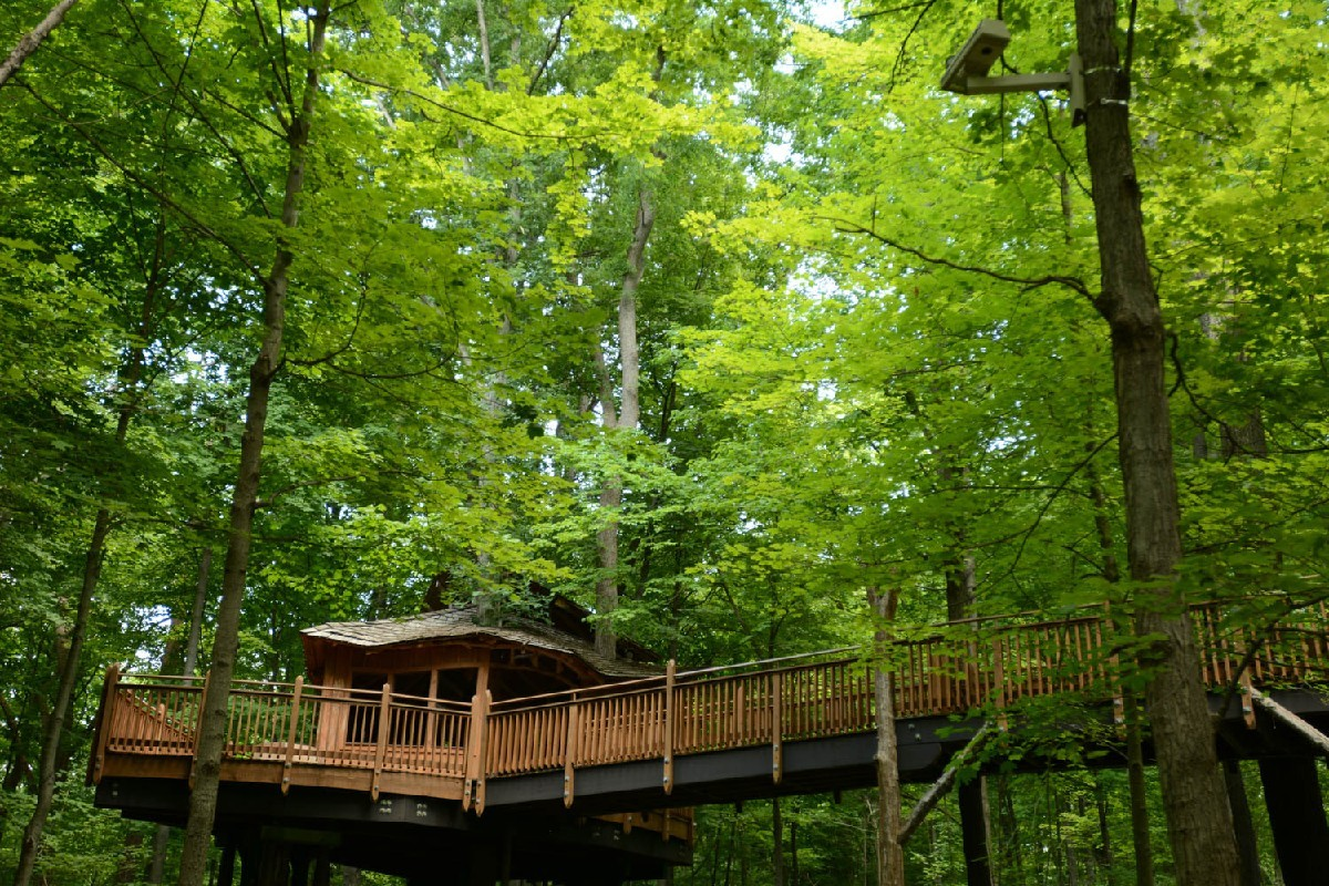9. Mt. Airy Treehouse: for the outdoorsy, tree-hugging adult. ADDRESS: 5083 Colerain Ave, Cincinnati, OH 45223 / Image: Dan Sullivan / Published: 1.6.17
