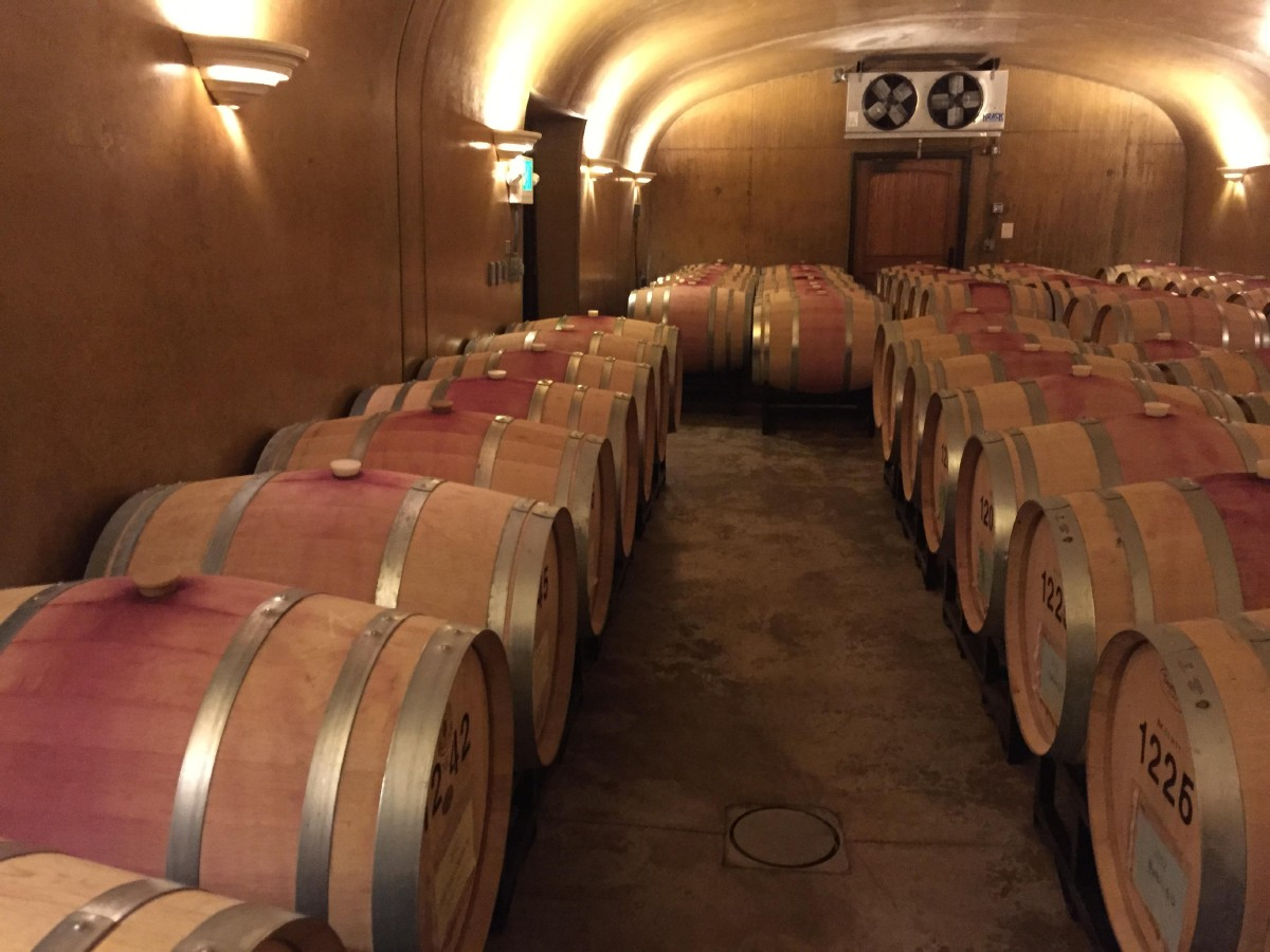 20 feet below Garrison Creek Cellars tasting room is their cellar room; where barrels of their 2012 Merlot and Malbec age. (Image: Frank Guanco)