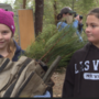1000 elementary school students plant thousands of trees in Josephine County