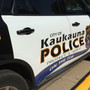 Kaukauna Police: Man arrested for pointing gun at people
