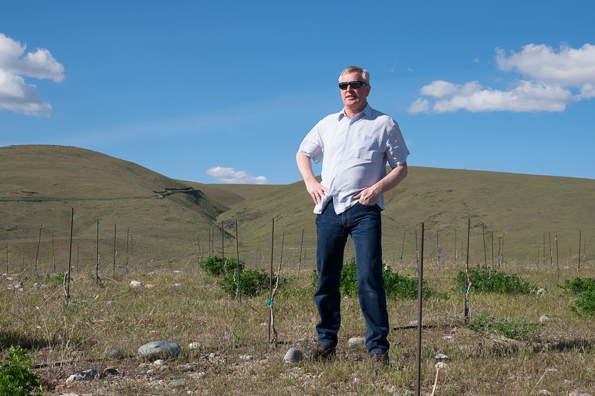 Owner David O'Reilly surveys his domain at  Owen Roe Winery (Image: Paola Thomas/Seattle Refined)