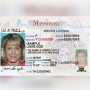 Time growing short for driver license measure
