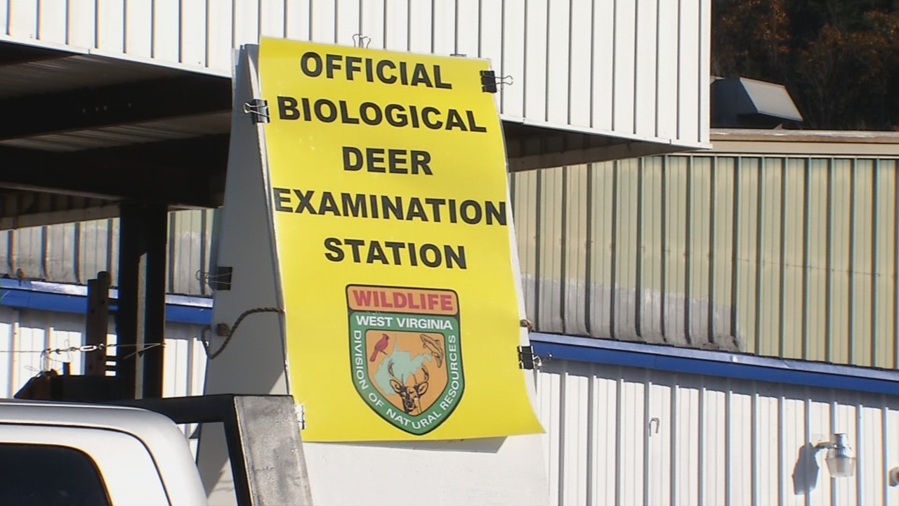 Biological Deer Checking Stations were set up in Mason,{&amp;nbsp;} Upshur and Hampshire counties for the first two days of buck gun season. (WCHS/WVAH)<p></p>