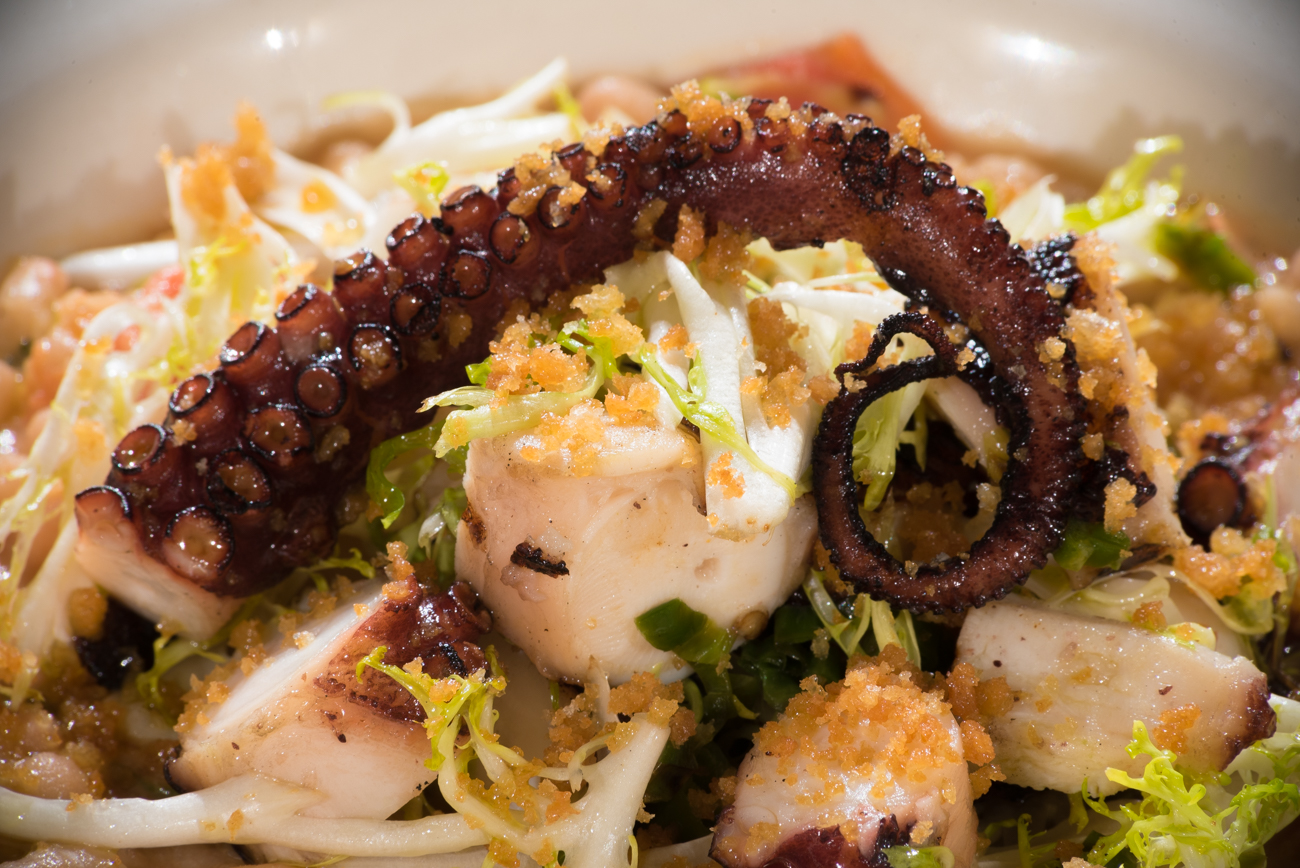 Grilled octopus with white bean ragu, frisee, and bread crumbs / Image: Phil Armstrong, Cincinnati Refined // Published: 11.19.16
