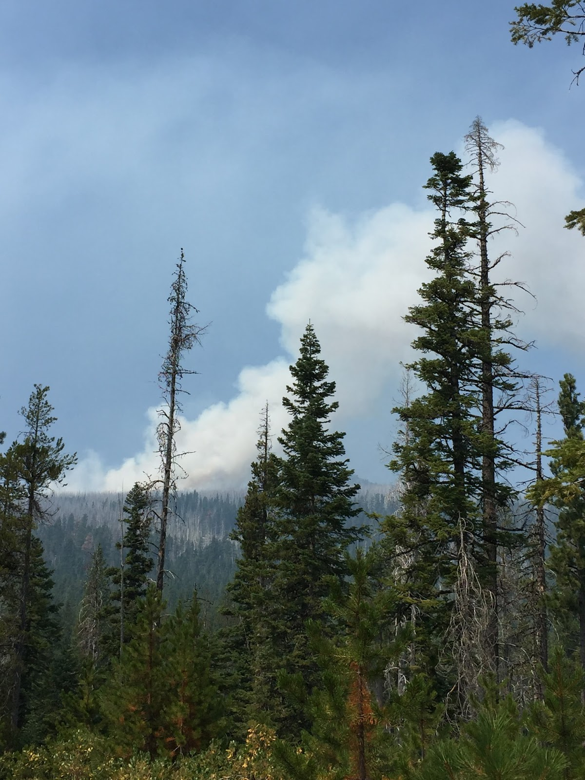 Smoke from the Milli Fire. (Deschutes National Forest)