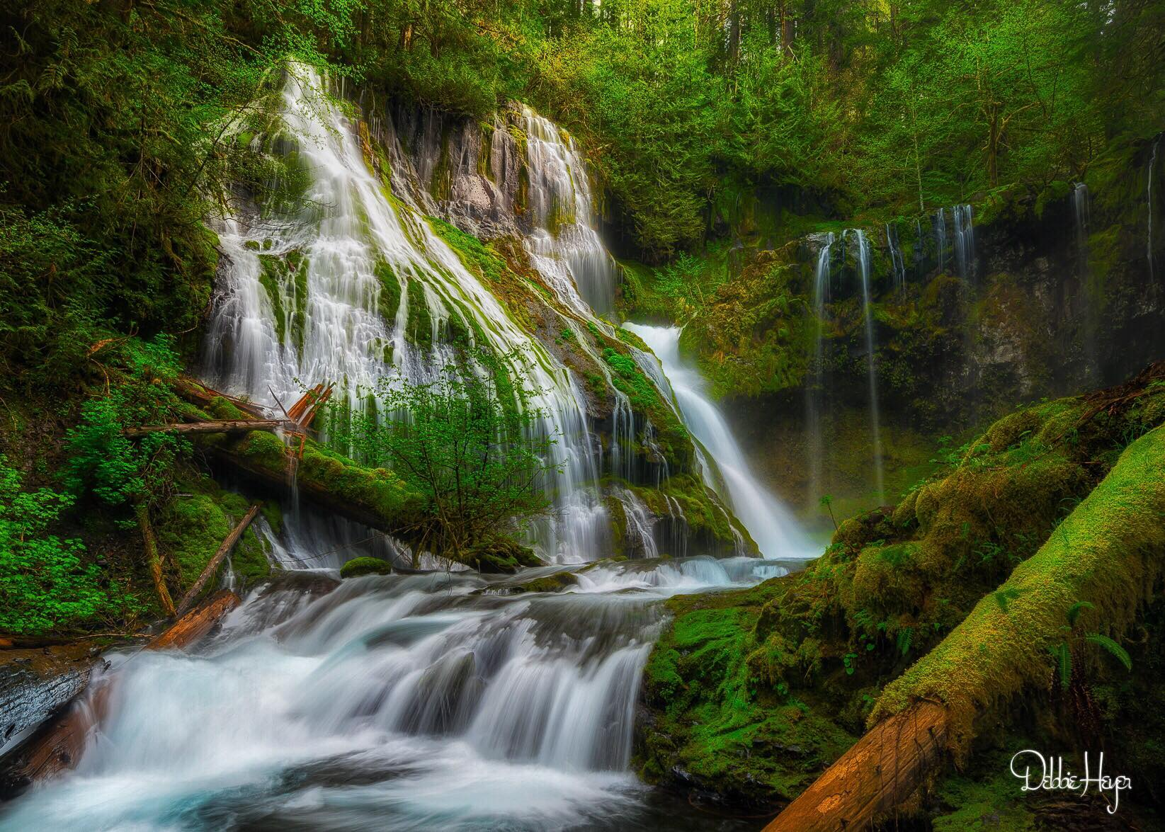 Debbie Heyer / Panther Creek Falls
