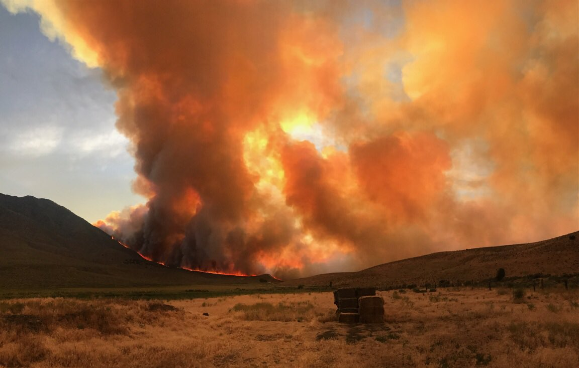 The Long Valley Fire burns on Saturday as it grows to more than 63,000 acres. (Courtesy: Reno Fire Department)