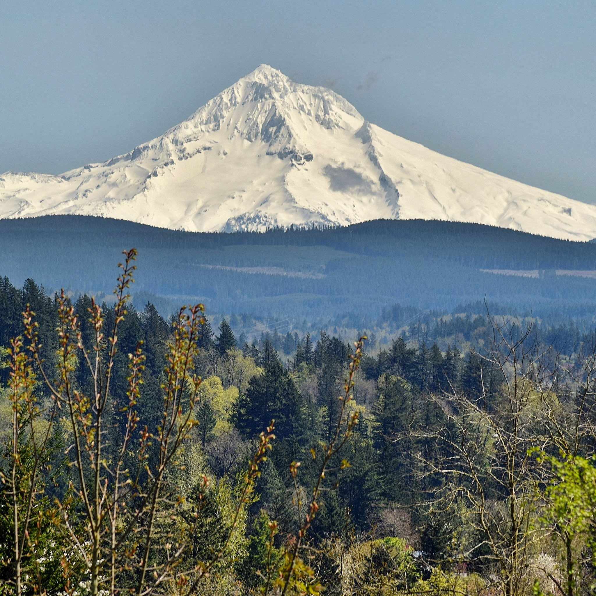 Mount Hood in the sun by Mike Warner