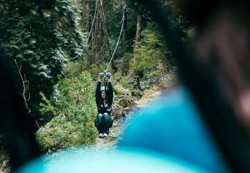 New zipline in Bellevue is now open | Seattle Refined