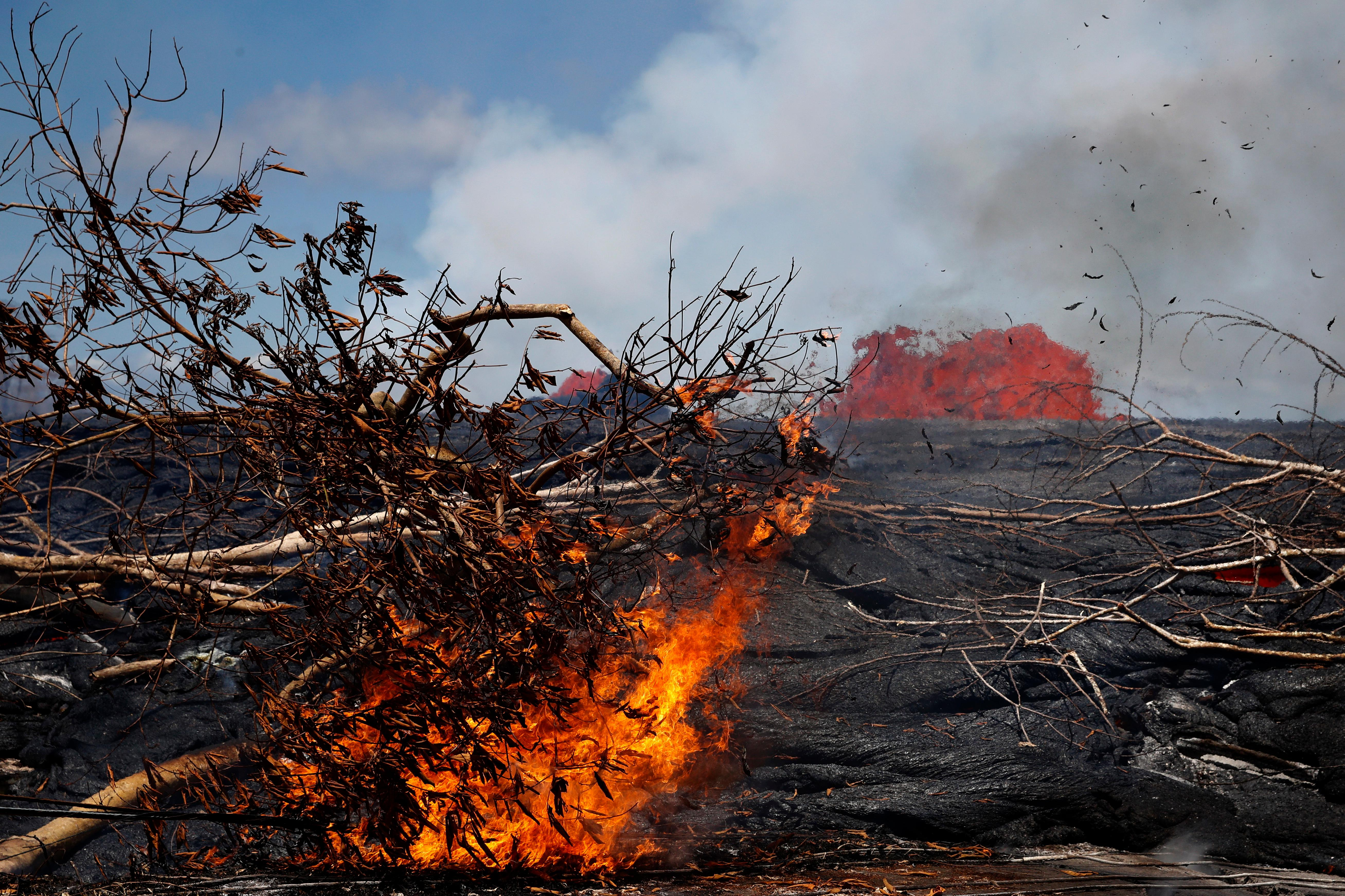 Lava burns a tree in the Leilani Estates subdivision near Pahoa, Hawaii, Tuesday, May 22, 2018. Authorities were racing Tuesday to close off production wells at a geothermal plant threatened by a lava flow from Kilauea volcano on Hawaii's Big Island. (AP Photo/Jae C. Hong)