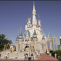 At Disney World, 4 hotels in pilot program to accept pets