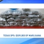 DPS trooper finds 51 pounds of marijuana during traffic stop in Carson County