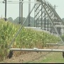 DHEC considering new water use rules because of mega farms