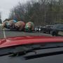Un-bear-able traffic hazard reported in Midland County