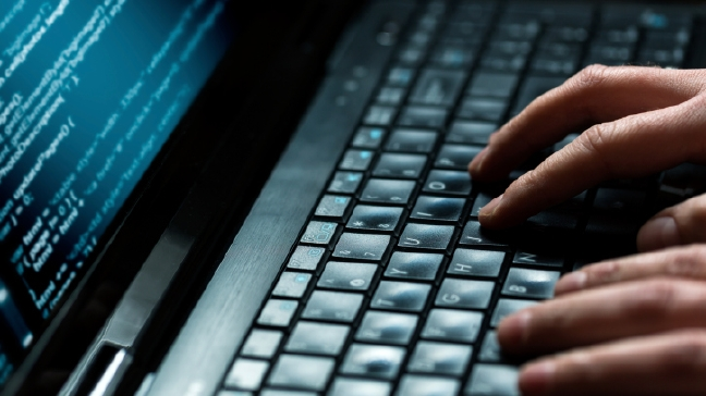 Half of U.S. Adults Hacked: Are You Among Them?
