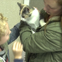 More than 75 shelters participate in 'Empty the Shelter' adoption event in Kalamazoo