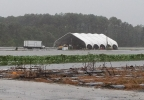 Boone Hall pumpkin patch underwater
