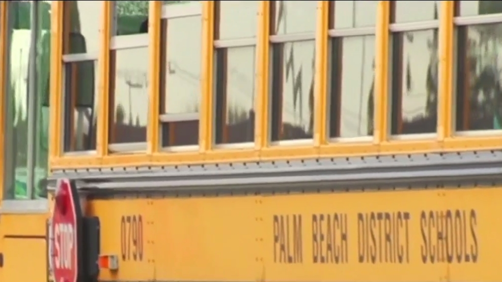 Palm Beach County schools open school bus hotline | WPEC