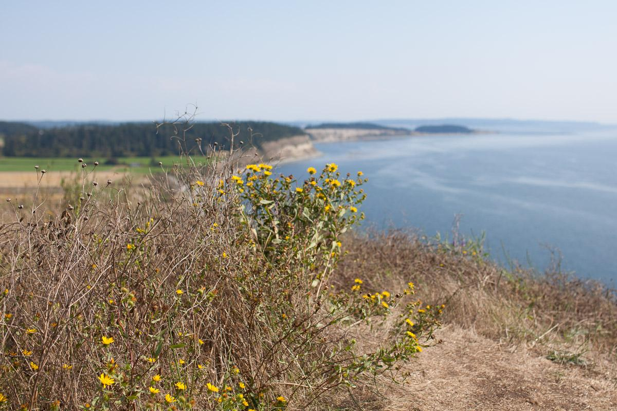 Ebey's Landing clifftop hike (Image: Paola Thomas / Seattle Refined)
