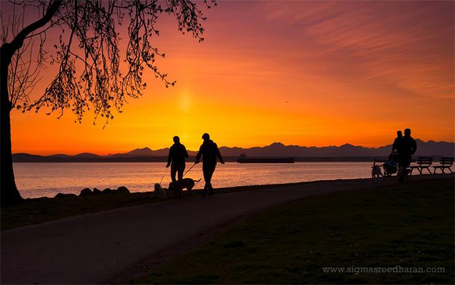 Sunset from Myrtle Edwards Park, Seattle. Photo: Sigma Sreedharan Photography